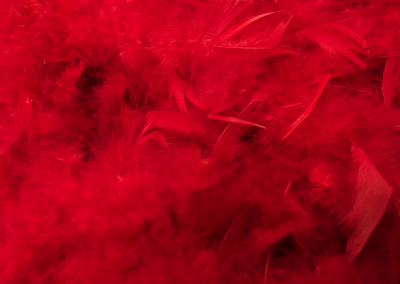 PlayfulLoving Tantra Empowerment Coaching Workshops and Programs red boa feathers